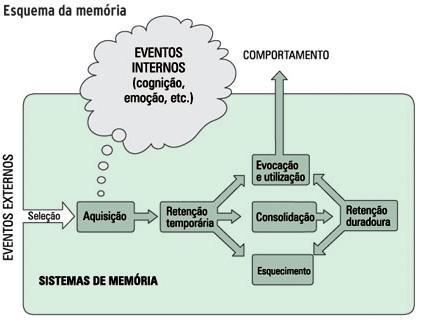 """Consolidação da memória, figura do livro """"Cem bilhões de Neurônios"""" de Robert Lent, 2010"""